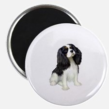 Cavalier (tri color) Magnet