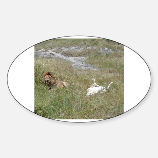 Cute Serengeti Sticker (Oval)