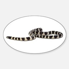 King Snake Photo Oval Decal