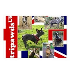 Tripawds UK Three Legged  Postcards (Package of 8)