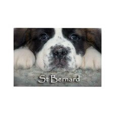 Baby Saint Rectangle Magnet (100 pack)