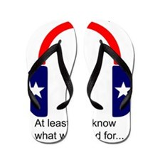 Apathetic Party 2012: At least you know Flip Flops