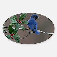 Bluebird in Holly Sticker (Oval)