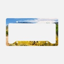 field of yellow daisies License Plate Holder