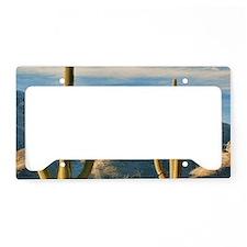 saguaro vista License Plate Holder