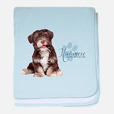 Havanese Puppy baby blanket