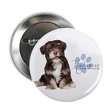 """Havanese Puppy 2.25"""" Button"""