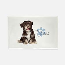 Havanese Puppy Rectangle Magnet