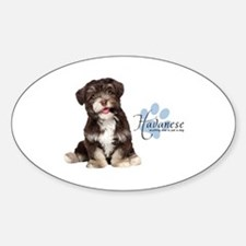 Havanese Puppy Sticker (Oval)