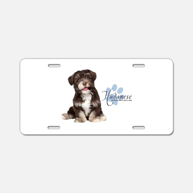 Havanese Puppy Aluminum License Plate