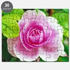 pink rose Puzzle