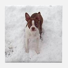 Red Boston Terrier Tile Coaster