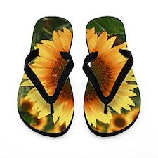Sunflowers Flip Flops