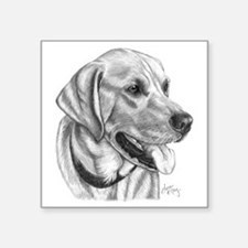 "Yellow Labrador Retriever Square Sticker 3"" x 3"""