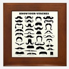 Know Your Staches Framed Tile