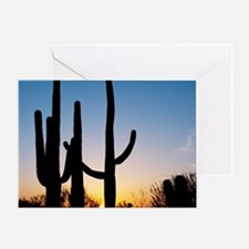 Arizona Cactus Greeting Card