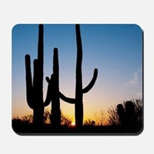 Arizona Cactus Mousepad