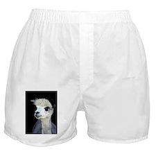 PRETTY ALPACA Boxer Shorts