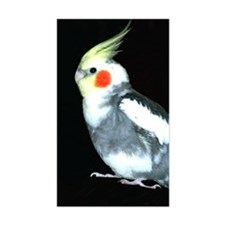 GRAY AND WHITE COCKATIEL Decal