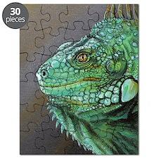 Nigel Puzzle