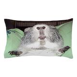Guinea pig Bedroom Décor