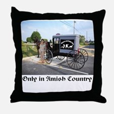 Whores and Buggy Throw Pillow