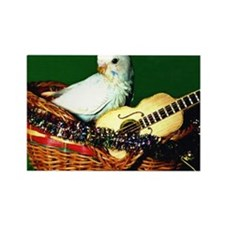 GUITAR PARAKEET Rectangle Magnet