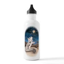 Following the star Water Bottle