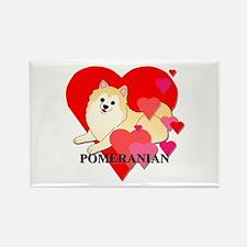 Cream Pomeranian Rectangle Magnet