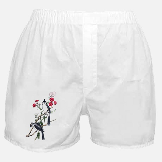 bct_notepads_719_H_F Boxer Shorts