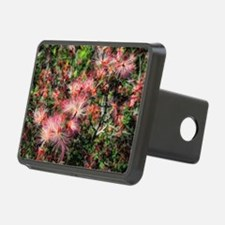 red fairydusters Hitch Cover