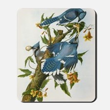 bja_greeting_card_192_V_F Mousepad