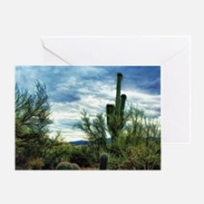 desert storm 2 Greeting Card