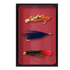 Fly-Fishing case Postcards (Package of 8)
