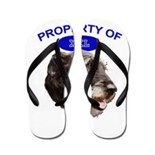 property of xxl Irish wolfhound Flip Flops