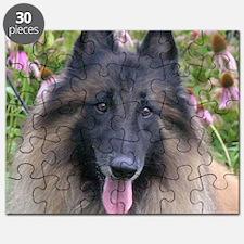 Tervuren Puzzle