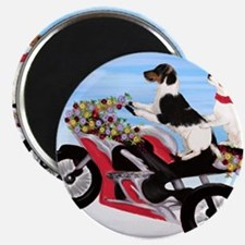 Jack Russell Terriers on a Motorcycle Magnet