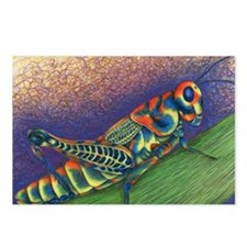 Painted Grasshopper Postcards (Package of 8)
