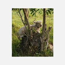 King of the Stump Throw Blanket
