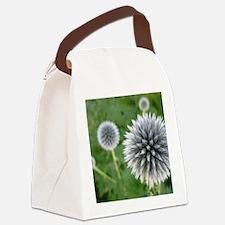 Great Garden Balls of Fire  Canvas Lunch Bag