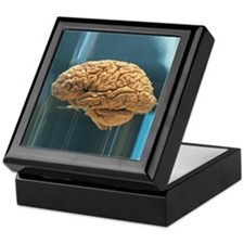 Brain for Mouse Keepsake Box