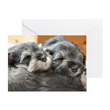 Snoozing Schnauzer Puppies Greeting Card