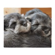 Snoozing Schnauzer Puppies Throw Blanket
