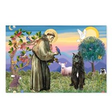 St Francis & Bouvier Postcards (Package of 8)