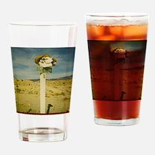 dvnp3 Drinking Glass