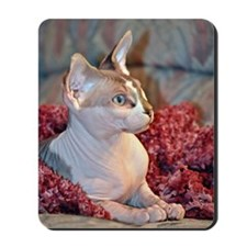 Little George Hairlesson Mousepad