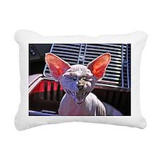 Little George Hairlesson Rectangular Canvas Pillow
