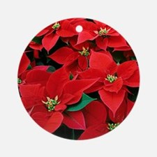 poin4x4 Round Ornament