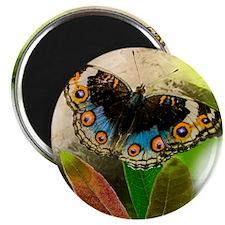 Little Butterfly Magnet