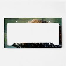 Chilling License Plate Holder